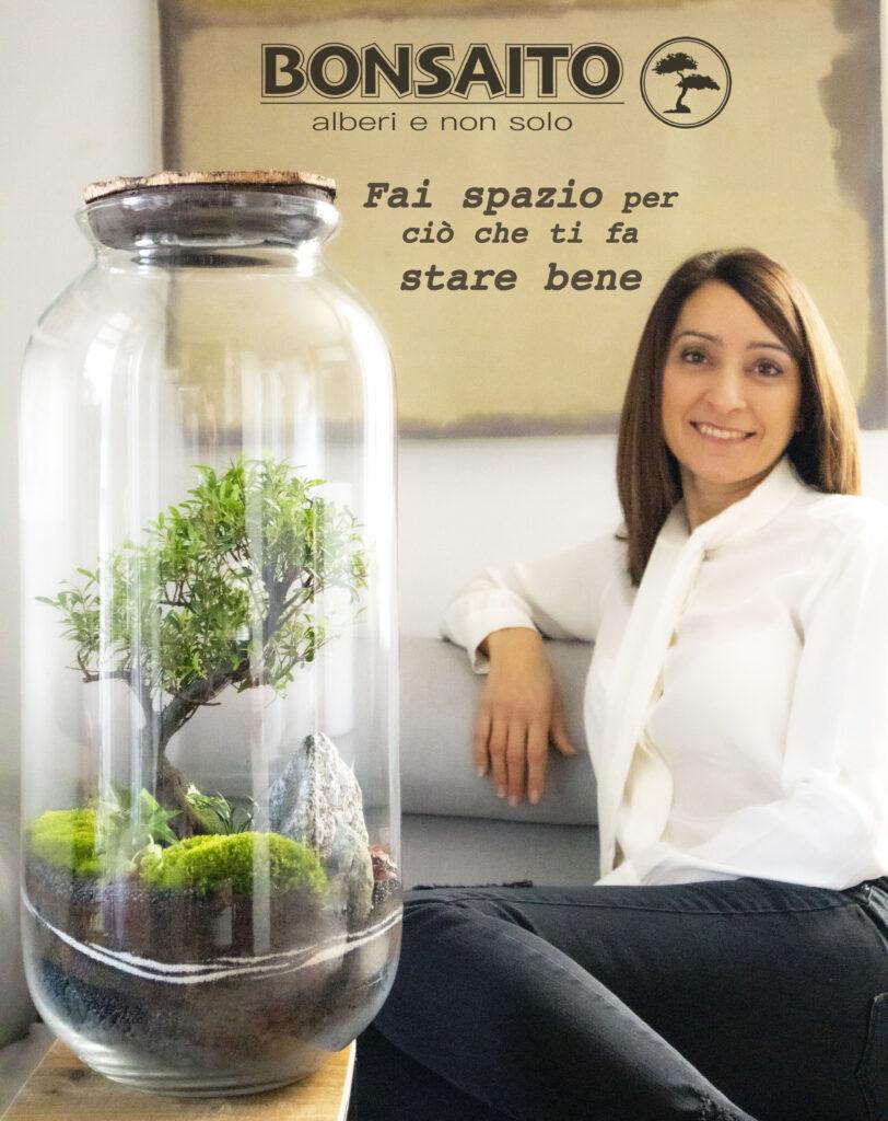 bonsaito terrarium